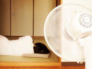 寝る時の扇風機