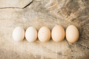 卵のサイズS・M・L大きさの違い