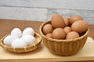 茶色い卵と白い卵