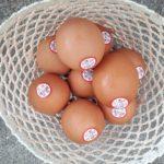 賞味期限 卵
