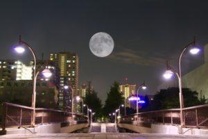 月の光と街灯