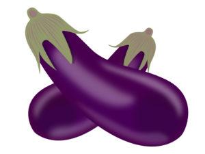 秋茄子は嫁に食わすな