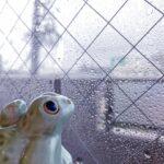 梅雨時季の換気・湿気対策